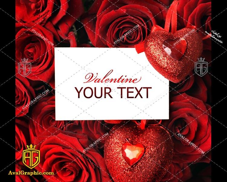عکس رز قرمز رایگان مناسب برای چاپ و طراحی با رزو 300 - شاتر استوک رز - عکس با کیفیت رز - تصویر رز - شاتراستوک رز