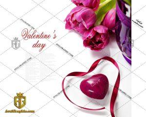 عکس با کیفیت گل بنفش مناسب برای طراحی و چاپ - عکس گل بنفش - تصویر گل بنفش - شاتر استوک گل بنفش - شاتراستوک گل بنفش