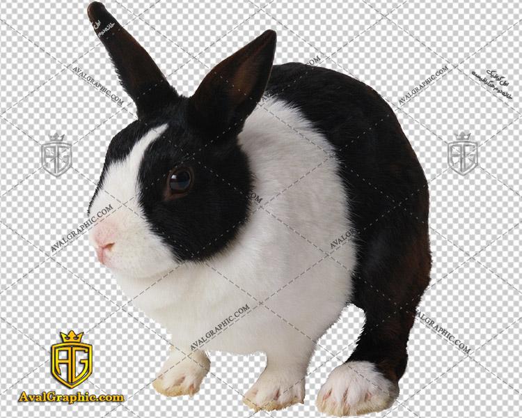 png خرگوش سیاه سفید , پی ان جی خرگوش , دوربری خرگوش , عکس خرگوش با زمینه شفاف, خرگوش با فرمت png