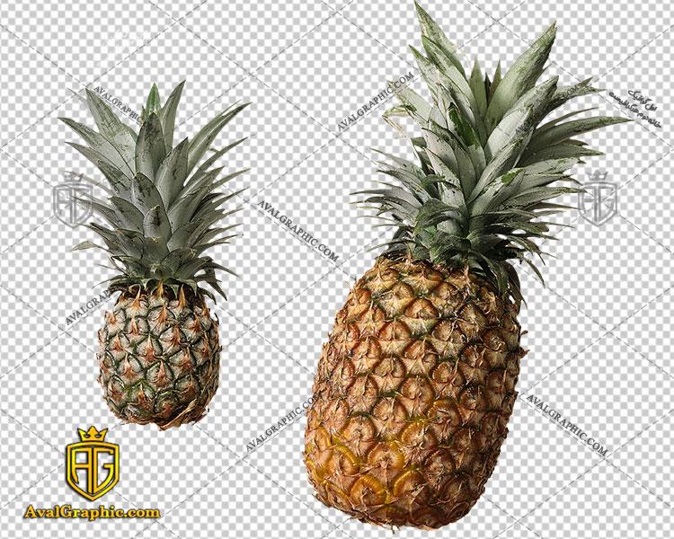 png آناناس بزرگ