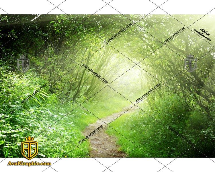 عکس مسیر باریک رایگان مناسب برای چاپ و طراحی با رزو 300 - شاتر استوک مسیر- عکس با کیفیت مسیر - تصویر مسیر- شاتراستوک مسیر