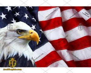 عکس با کیفیت عقاب پرچم آمریکا