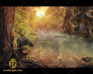 عکس با کیفیت دریاچه جنگلی مناسب برای طراحی و چاپ - عکس دریاچه - تصویر دریاچه - شاتر استوک دریاچه - شاتراستوک دریاچه