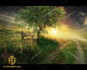 عکس با کیفیت نیمکت جنگلی مناسب برای طراحی و چاپ - عکس نیمکت - تصویر نیمکت - شاتر استوک نیمکت - شاتراستوک نیمکت