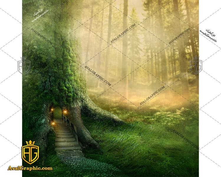 عکس با کیفیت خانه جنگلی مناسب برای طراحی و چاپ - عکس خانه - تصویر خانه - شاتر استوک خانه - شاتراستوک خانه