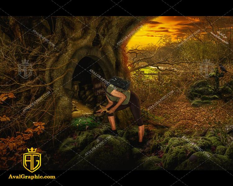 عکس با کیفیت تونل درختی مناسب برای طراحی و چاپ - عکس تونل - تصویر تونل - شاتر استوک تونل - شاتراستوک تونل