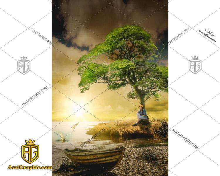 عکس با کیفیت درخت جزیره مناسب برای طراحی و چاپ - عکس درخت - تصویر درخت - شاتر استوک درخت - شاتراستوک درخت